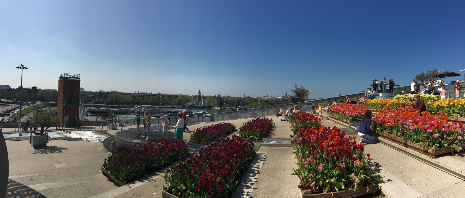 A panoramic view of NEMO's rooftop. To the left of the image, people stand in the distance, looking out at the clear blue sky, and harbor/city buildings below us. Moving toward the right, red flowers, then pink, then orange and yellow sit in rows, and people sitting in the distance and enjoying the weather become visible.